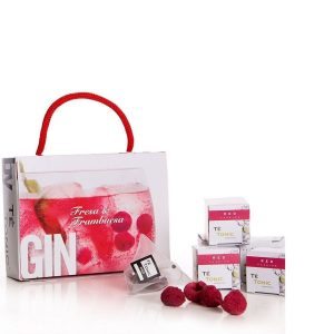 Kit de gin tonic sabor natural
